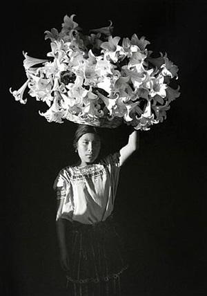 canasta de luz by flor garduño