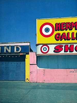coney island, new york by evelyn hofer