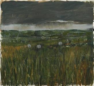 the meadow by enrique martínez celaya
