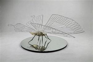 butterfly 105 by feng shu