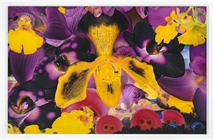 photoevaporation by marc quinn