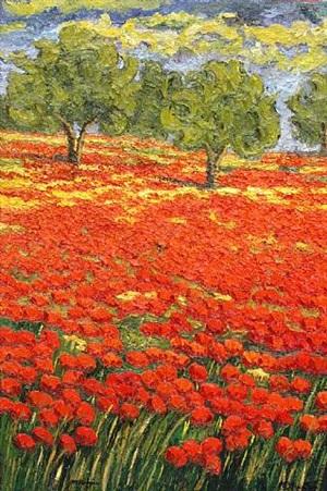poppy field by maria amparo