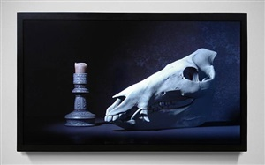 still life (vanitas) by jason salavon