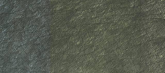 wvz 2006 xii 1 (detail) by peter wechsler