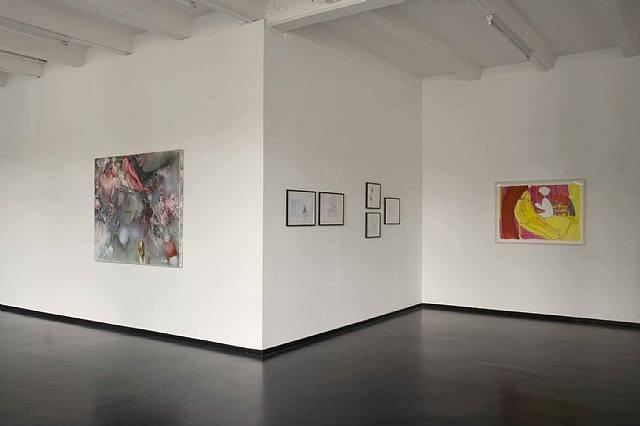 installation view: dasha shishkin 'hybrid' by dasha shishkin
