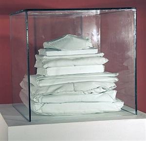 glass box #25 by china adams