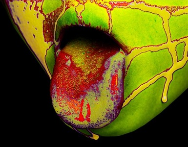 all about colour by howard schatz