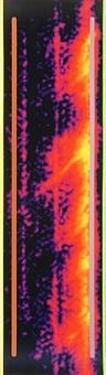 untitled (orange spectrum) by jack goldstein