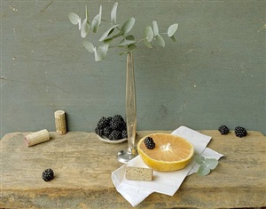 grapefruit & eucalyptus by david halliday