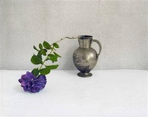 purple hydrangea by david halliday