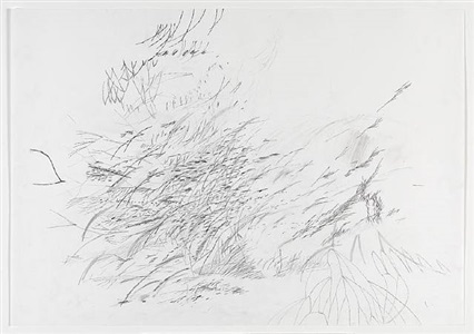 kupferstichkabinett between thought and action by julie mehretu