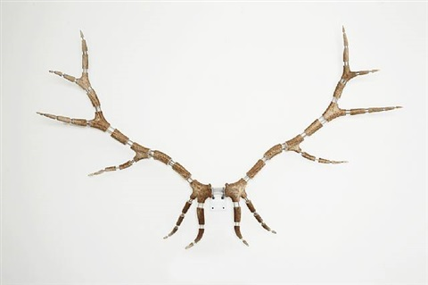 improved rack (scottish red stag #6) by michael joo
