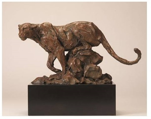 leopard on a rock by jonathan kenworthy