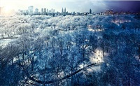 central park by stephen wilkes
