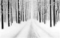 winter 3 by danja akulin