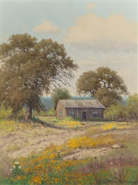 old shed, texas hill country by palmer chrisman
