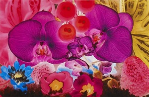 untitled 04, from at the far edges of the universe by marc quinn