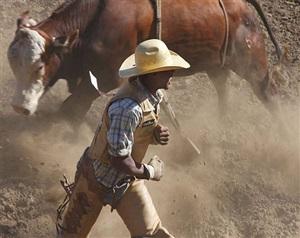 <!--11-->black cowboys: bull riding: jonny allen, bill pickett rodeo, oakland, california by andrea robbins and max becher