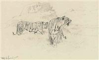 tigers by wilhelm friedrich kuhnert