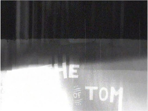 the death of tom by glenn ligon