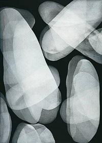 blanco sobre negro 7 by michelle concepción
