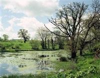 spring by richard billingham