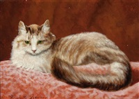 perched kitten by henriette ronner-knip