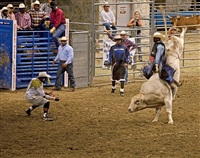 <!--19-->black cowboys: bull riding: farshot, bill pickett rodeo, los angeles, california by andrea robbins and max becher