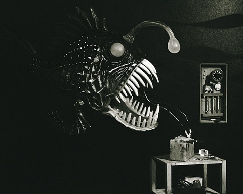 angler fish by lori nix