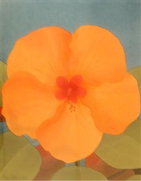 orange hibiscus by mark adams