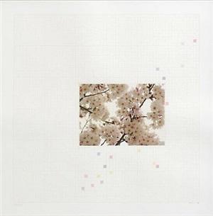 sakura chart #0.01 by darren almond