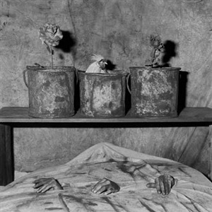three hands by roger ballen