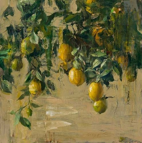 lemon tree quang ho