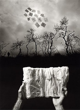 elusive journal by jerry uelsmann