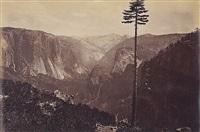 best general view, yosemite by carleton e. watkins