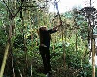 hide and seek by tom hunter