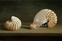 nautilus by elizabeth leary strazzulla