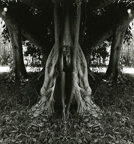 untitled woman sitting in front of tree fading in by jerry uelsmann