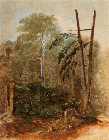 study of a woodland landscape by carl spitzweg