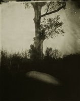 deep south #5 by sally mann