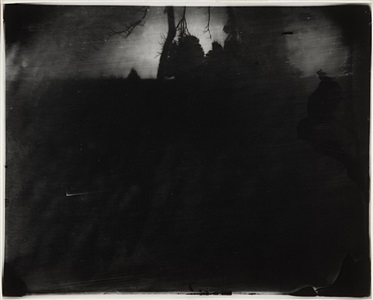 battlefields, untitled (antietam #12) by sally mann