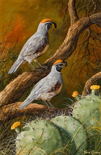 two quail by trevor swanson