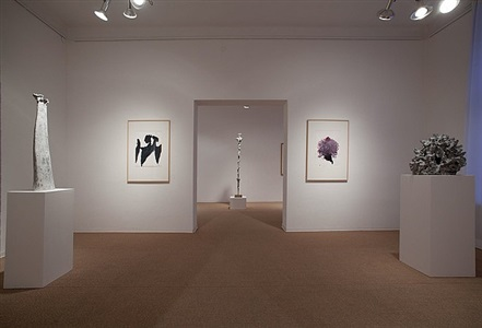 installation view: the land of the three rivers, o.t., shiba, o.t., nature amassement by alessandro twombly