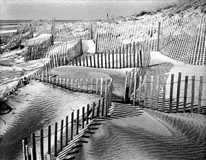 beach fence #1 by daniel jones