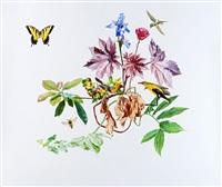 the tiger swallowtail plant by mark fairnington