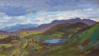 welsh mountains by augustus edwin john