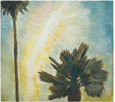tame palms by frederick s. wight