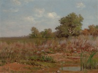 edge of a marsh by peter edward rudell