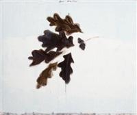 untitled (oak) by joe andoe