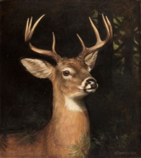 buck in the forest by alexander pope